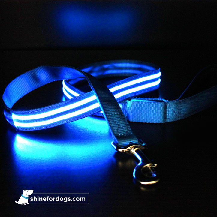 blue-shine-for-dogs-hope-leash2