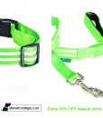 lime-shine-for-dogs-leash-collar-combo-Off