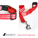red-shine-for-dogs-leash-collar-combo-Off