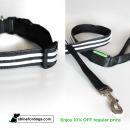shine-for-dogs-leash-collar-combo-Off
