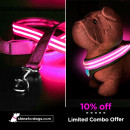 pink-shine-for-dogs-leash-harness-combo-ON