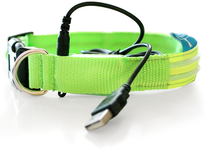 recharging-led-shine-for-dogs-collar