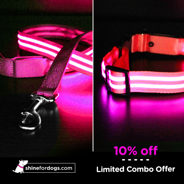 pink-shine-for-dogs-leash-collar-combo-ON