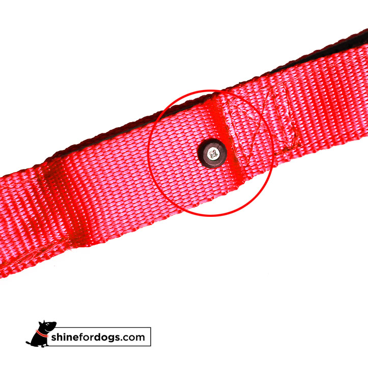 red-shine-for-dogs-happiness-leash-secure-battery