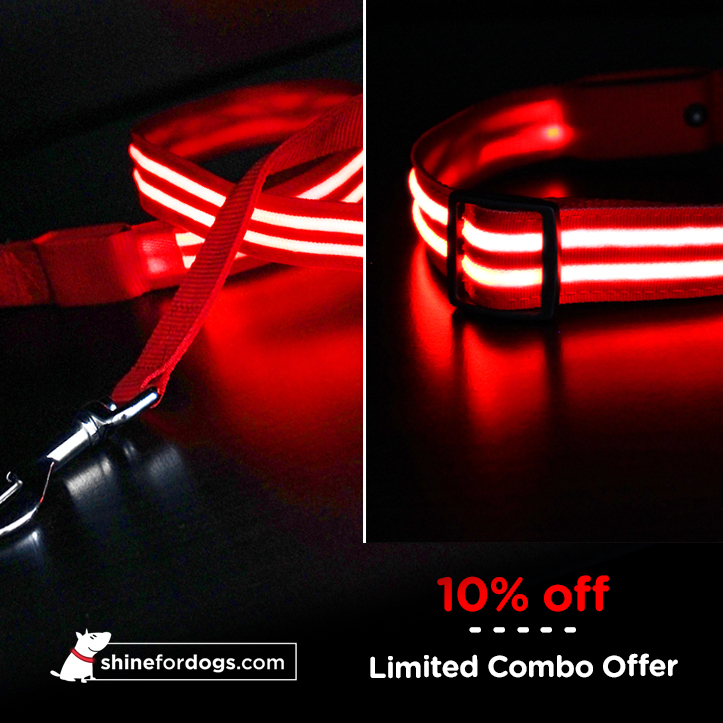 red-shine-for-dogs-leash-collar-combo-ON
