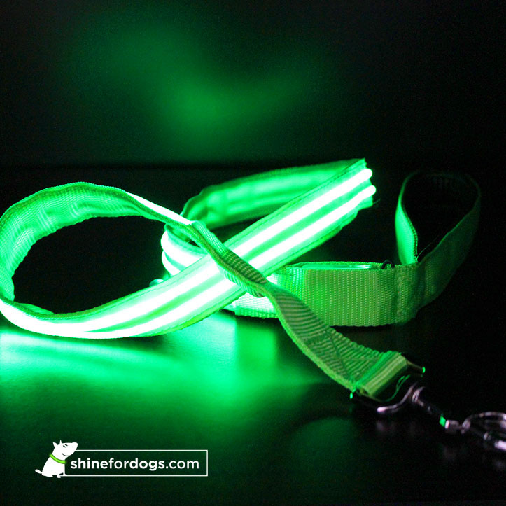 lime-shine-for-dogs-joy-leash